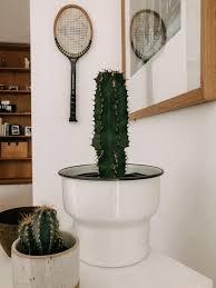 wohnzimmer vintagedecoration kaktus einbauschran