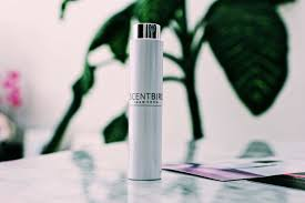 ScentBird Review: 15% Coupon Code   Free Trial (2019) Blizzard Gear Store Promo Code Scentbird Subscription Review Coupon October 2018 Scentbird 15 Free Trial 2019 September Off Discountreactor 30 Codes Discount Home Pinterest Minimall 25 Off A Year Of Boxes July 2016