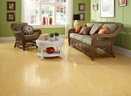 Bamboo Hardwood Flooring Pros And Cons by Compared To Bamboo Laminate Flooring