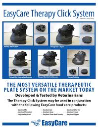 easycare therapy system easyboot cloud