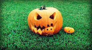 Vampire Pumpkin Designs by Pumpkin Idea 4 Pumpkin Eating Pumpkin Youtube