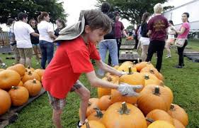 Pumpkin Farms In Bay County Michigan by Pumpkin Pickin U0027 Halloween And Fall Events In Miami Dade Miami