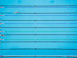 Olympic Swimming Pool Top View Simple 90 Decorating Design Of