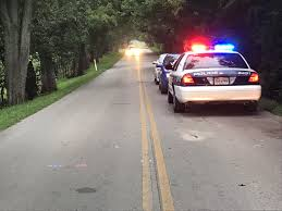 100 Two Men And A Truck Lexington Ky Horses Hit And Killed By Car After Getting Loose From Farm BC