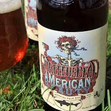 Dogfish Punkin Ale Clone by American Beauty Dogfish Head Craft Brewed Ales Off Centered