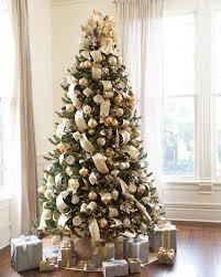 Vermont White Spruce Tree 9