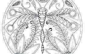 Free Dragonfly Coloring Pages For Adults Cute Simple Mandala To Print Kids Page Outstanding Printable General