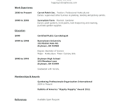 Resume Template For First Job Professional Pdf Sample Example