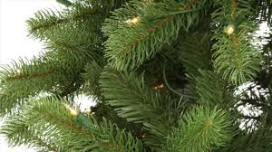 Dunhill Fir Christmas Trees by National Tree Company Downswept Douglas Fir Review Best