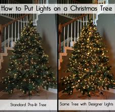 Best Smelling Christmas Tree Types by Designer Secrets For How To Put Lights On A Christmas Tree