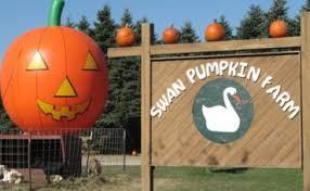 Pumpkin Farms Wisconsin by Swan U0027s Pumpkin Farm Franksville Wisconsin Get My Perks