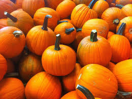 Chagrin Falls Pumpkin Roll by Medieval Fest And Fall Fun At Mapleside Farms Moody Blues At