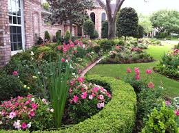 Ornamental boxwoods help shape the beds while Conversation Piece