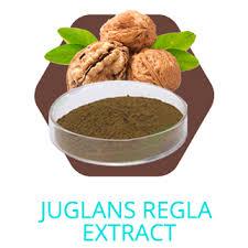 Rich Dark Roast Coffee Espresso Organic Cocoa Canola Lecithin Green Tea L Theanine PEA Beta Phenylethylamine HCL Extract