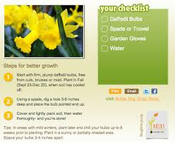 adding to your and garden with bulbs aka gardening