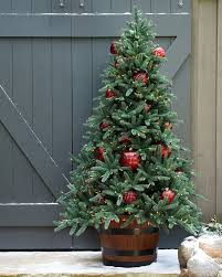 Prelit Christmas Tree That Puts Itself by Oakville Narrow Outdoor Christmas Tree Balsam Hill