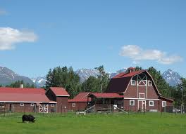 Barns « The Matanuska Colony Barns Aa Bar Ranch Barn Group Pnic Site Raisers Film Explores Country Cathedrals Iowa History Gilbert Whites House Is A Barn Wedding Venue Near Alton Hampshire Spectacular Gambrel Home Perfect For Entertaing Family Touring Barns Allstate Tour To Feature Several From Long Eddy Dutch Heritage Restorations Woodstock Area Barns Photo Gallery Visiting Vt Free Images House Building Home Shed Hut Shack Winter Architecture Wood Breathtaking Cversions Your Inspiration Best 25 Plans Ideas On Pinterest Horse Small Roof