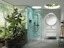 wie im dschungel die besten pflanzen fürs badezimmer