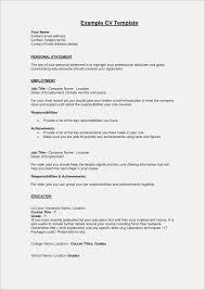 Summary On Resume Example Fresh Examples For Freshers