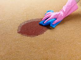 How To Fix Bleach Stains On Carpet by How To Remove Vomit Stains From Clothing And Carpet