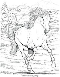 Race Horse Coloring Pages Printable Detailed 6 Good For Older Kids Free Online