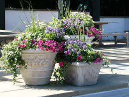 Garden ideas with flower pots