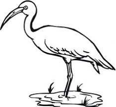 Whooping Crane Bird Coloring Page From Cranes Category Select 27336 Printable Crafts Of Cartoons Nature Animals Bible And Many More