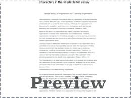 scarlet letter characters – aimcoach