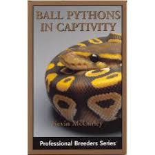 Coastal Carpet Python Facts by Carpet Python Facts Photos U0026 Information Breeding Care