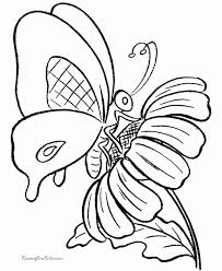Butterfly Coloring Pages Printable 9102