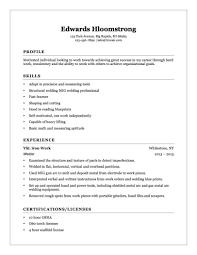 Welder Helper Resume Example