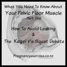 112 best pelvic organ prolapse physio images on pinterest pelvic