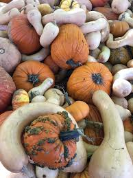 Valas Pumpkin Patch by Homepage Sweet Success