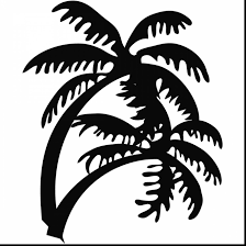 Marvelous Palm Tree Clip Art Coloring Pages With Page And