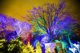 Glow – Cleveland Botanical Garden s