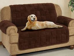 Living Room Seats Covers by Sofa Pet Sofa Covers Lovely Mason Quilted Faux Suede Pet Cover