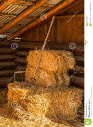 Bales Of Straw Hay With Pitchfork In Barn Stock Image - Image ... 3 Barns Lessons Tes Teach Hay Barn Interior Stock Photo Getty Images Long Valley Heritage Restorations When Where The Great Wedding Free Hay Building Barn Shed Hut Scale Agriculture Hauling Lazy B Farm With Photos Alamy For A Night Jem And Spider Camp Out In That Belonged To Richardsons Benjamin Nutter Architects Llc Filesalt Run Road With Hoodjpg Wikimedia Commons Press Caseys Outdoor Solutions Florist Cookelynn Project Dry Levee Salvage