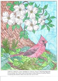 192 Best Nature In Bloom Coloring Contest Entries Images On