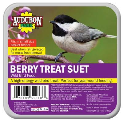 Audubon Park 1844 Berry Treat Suet Bird Seeds - 11.75oz
