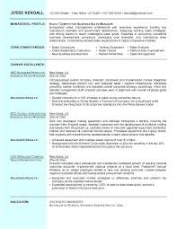 Example Of Business Resume Sales Free Sample L Profile In