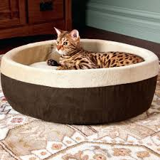 Cat Beds Petco by Petco Cat Beds Dog Beds Go Pet Club Foam Orthopedic Dog Bed Dog