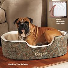orthopedic dog beds double deep slumber nest dog bed by drs