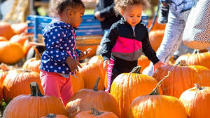 Columbus Pumpkin Patch by Things To Do In Columbus This Weekend Oct 6th Oct 8th 2017