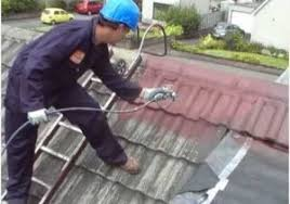 painting concrete roof tiles 盪 buy home dzine how to clean and