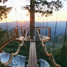 15 Of The Worlds Most Amazing Tree Houses Better Than Any Grand Palace