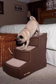 Pet Stairs For Tall Beds by Dog Stairs And Dog Ramps To Give Your Older Pooch A Helping Hand