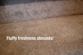 diy cleaner for stubborn carpet stains the creek line house