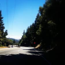 Christmas Tree Lane Palo Alto by Highway 17 23 Photos U0026 52 Reviews Local Flavor Santa Cruz
