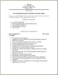 Resume Information Technology Examples 2014