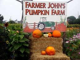 Pumpkin Festival Half Moon Bay Traffic by Half Moon Bay Ca Pillar Point Rv Park Farmer John U0027s Pumpkin Farm